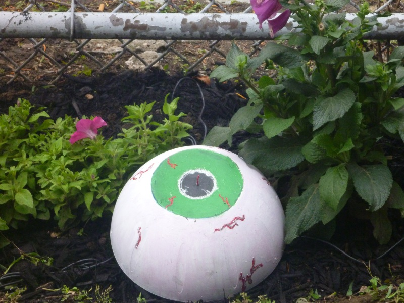 SLA_eyeball_garden