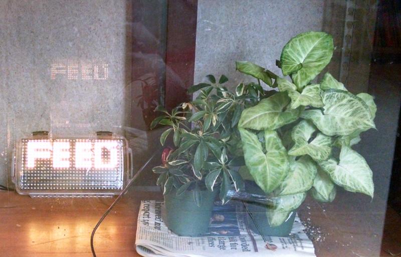 SLA_LED_plant