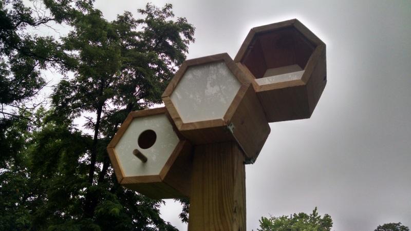 SLA_birdhouse_close_web