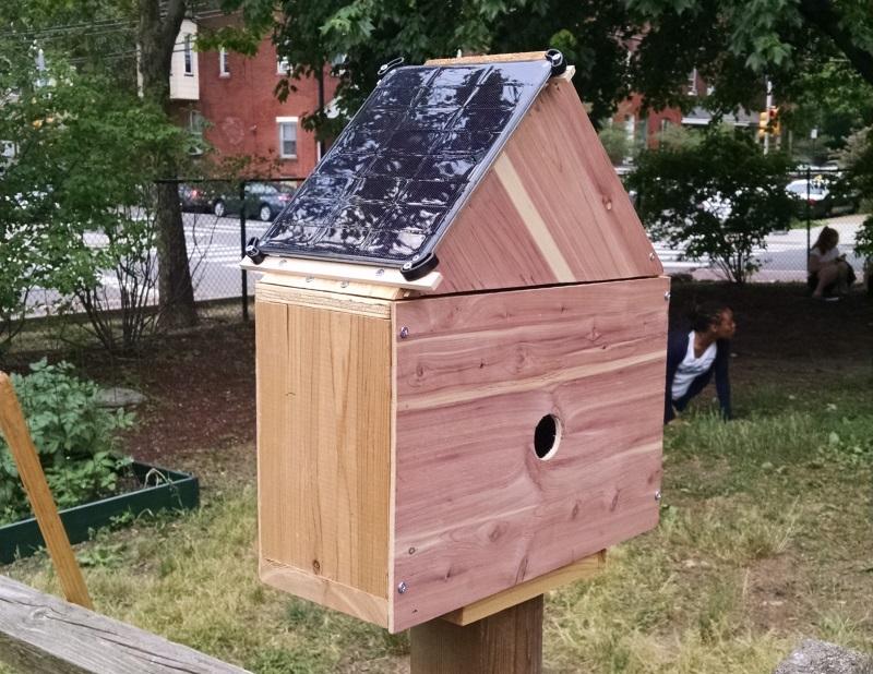 penn_alexander_birdhouse_zoom